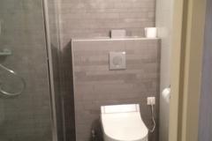 Nieuw geplaatst toilet